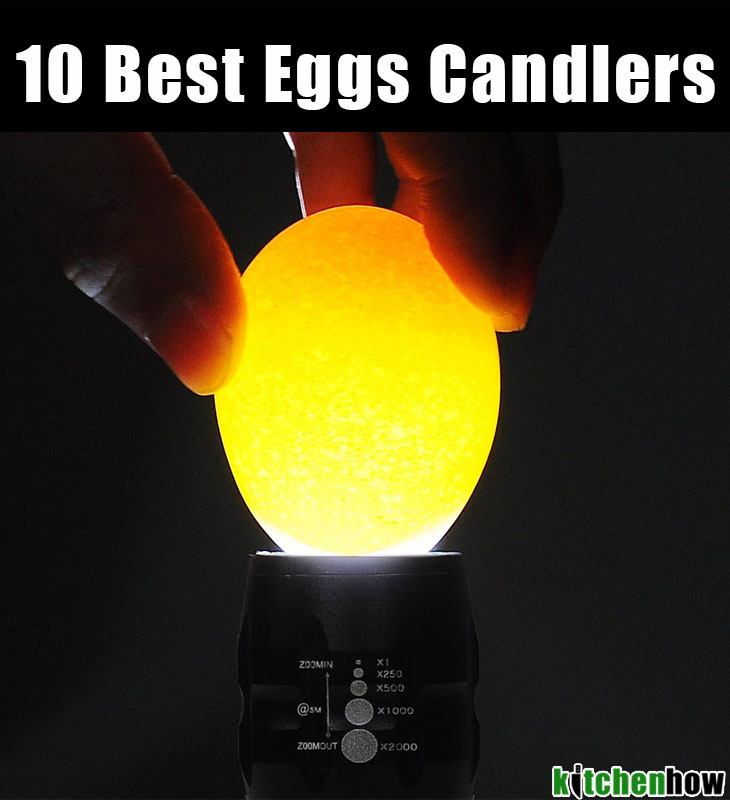 10 best eggs candlers
