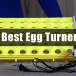 5 Best Egg Turners Review 2017