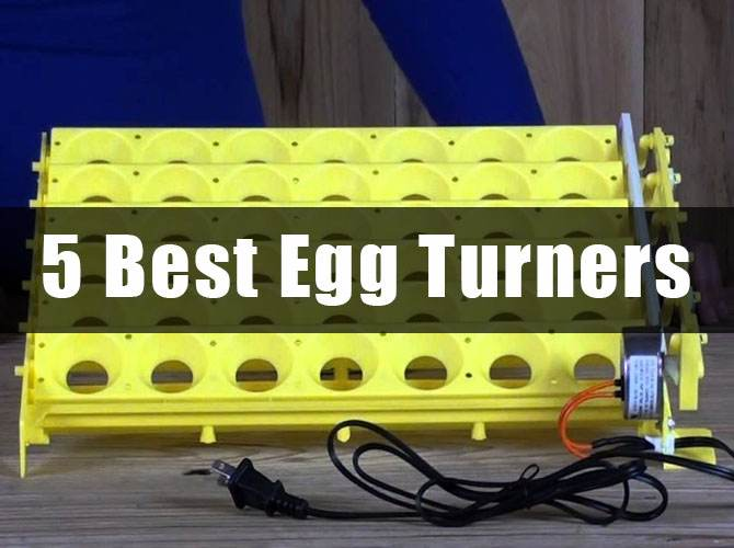 5 Best Egg Turners Review 2018: Which You Should Consider Before Buying?