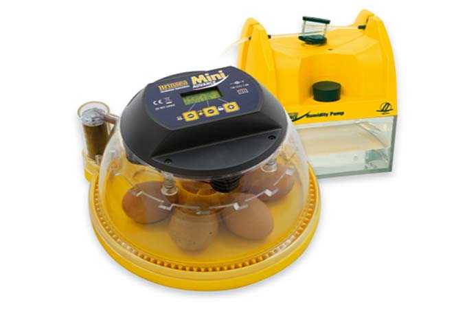 Brinsea Mini Advance Hatching Egg Incubator reviews