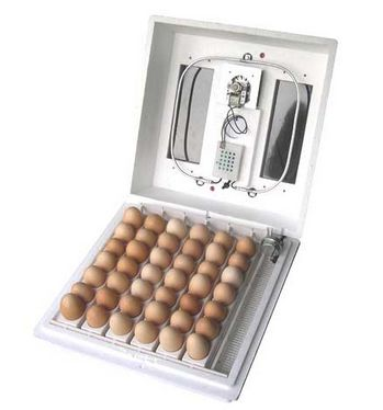 Farm innovators model 4200 circulated air incubator with automatic egg turner