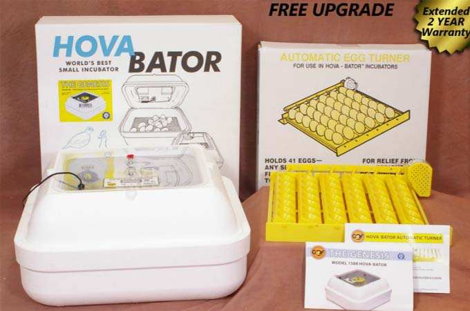 GQF 1588 Genesis Hova-Bator Incubator reviews