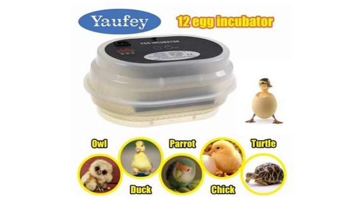 Yaufey digital eggs incubator with egg turner reviews