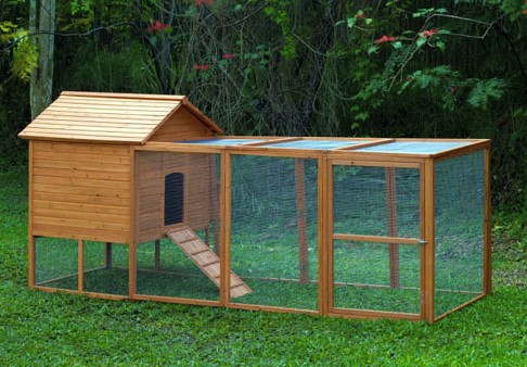 chickens coops reviews