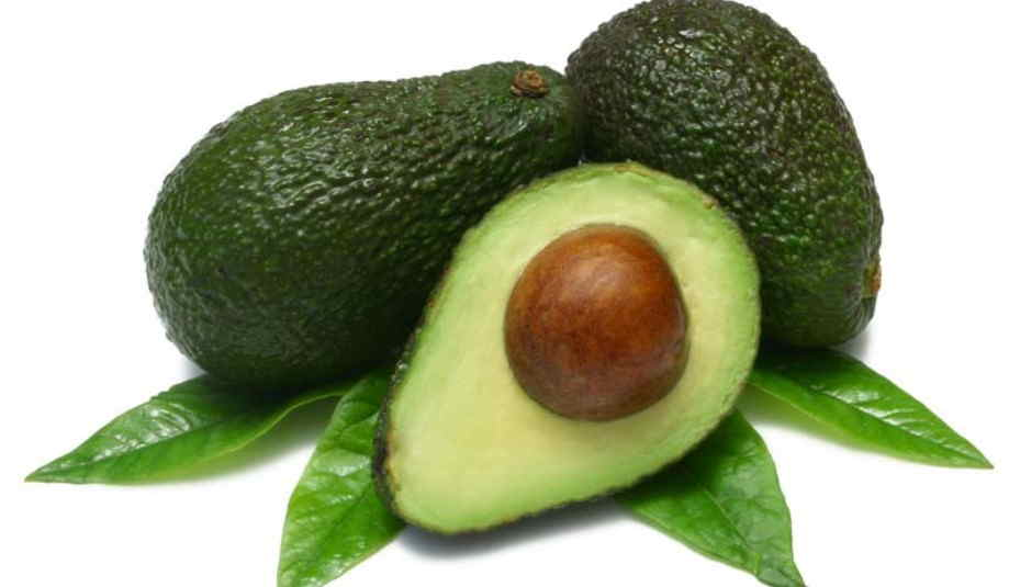 avocado fresh